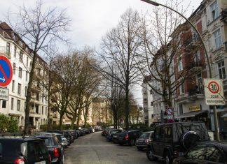 Straßenbäume am Eppendorfer Baum