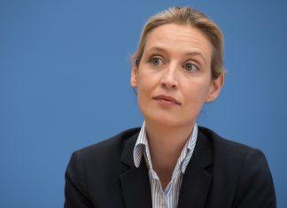 Antrag zurückgewiesen: AfD-Politikerin Alice Weidel. Foto: Soeren Stache/DPA