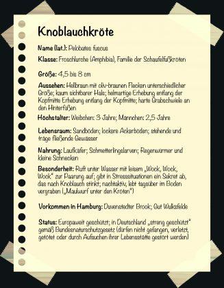 Steckbrief Knoblauchkröte Seltene Tiere in Hamburg