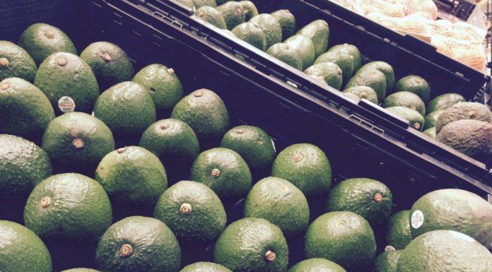 Klein, grün, fettig und extrem angesagt: die Avocado. Foto: Pexels