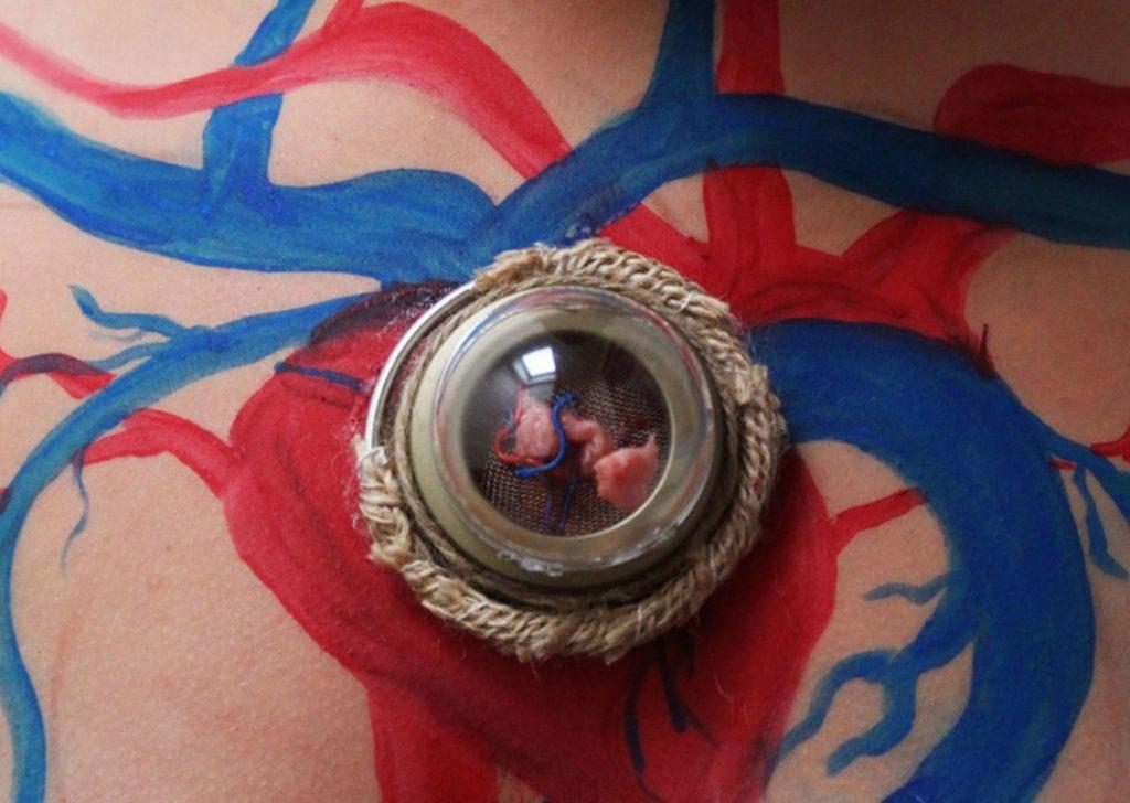 Ein Körper mit aufgemalten Arterien in rot und blau, in der itte ein Amulett mit einer körpereigenen Muskelzelle