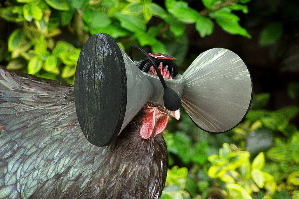 Ein Huhn mit einer VR_Brille auf der Food Revolution
