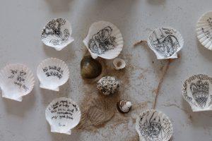 Das Muschelprojekt von Wangyiwei