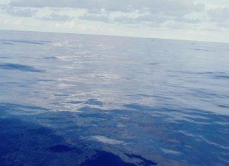 Das Meer in Drift