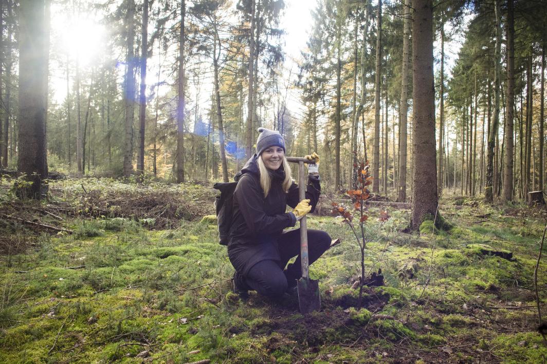 FINK.HAMBURG-Redakteurin Johanna mit ihrem ersten selbstgepflanzten Baum. Foto: Paul Spethmann / @stolem