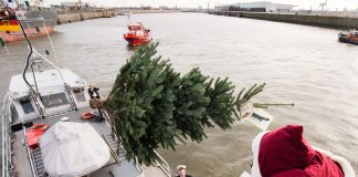 Weihnachtsmann-verteilt-Bäume-im-Hafen