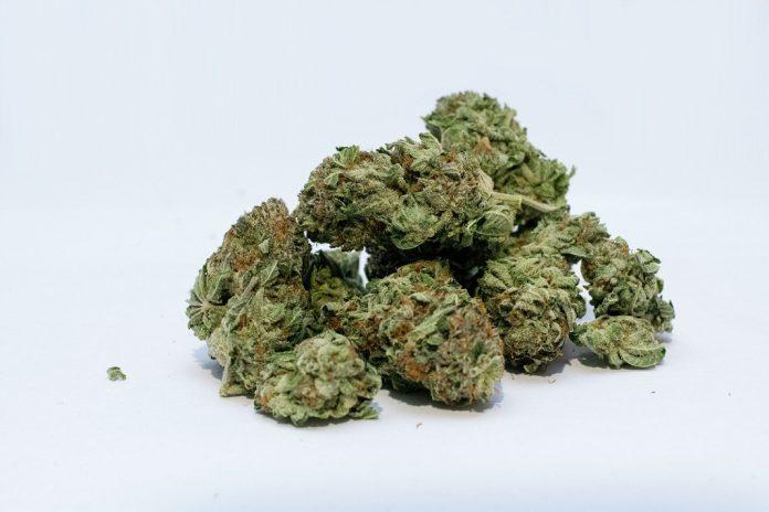 Im Auto eines 70-Jährigen wurden 15 Kilo Drogen gefunden