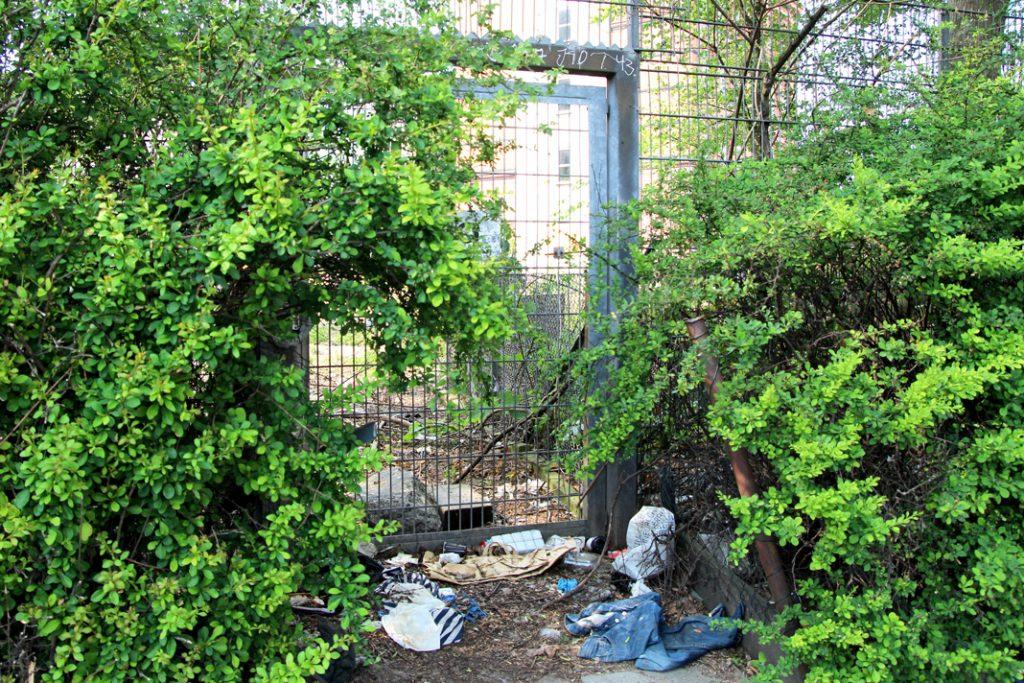 Ein Stück von einer Hilfestelle für Obdachlose entfernt liegen Kleidung, Tüten und Müll im Gebüsch. Foto: Nadine von Piechowksi