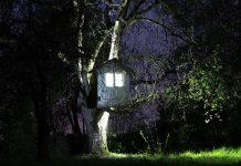 Foto Triennale leuchtendes Baumhaus