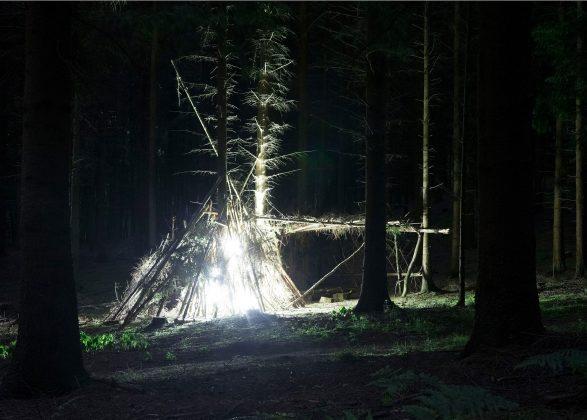 Foto Triennale Behausung im Wald