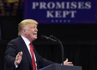 """Donald Trump bei einer Rede. Von seinem Wahlkampf handelt der Film """"American Chaos"""""""