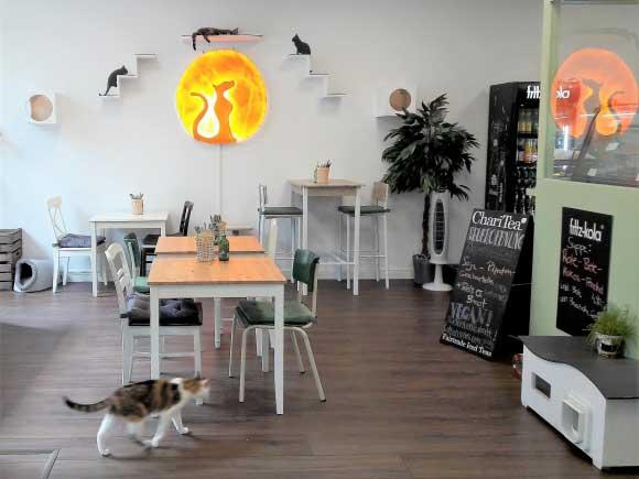 Die Sieben Besten Cafes Fur Ein Winterfruhstuck Fink Hamburg