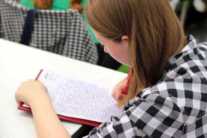 Protest AfD: Am Montag protestieren SchülerInnen, Lehrende und Eltern gegen eine Internetplattform von der AfD. Foto: Pexels