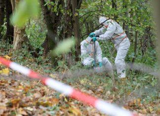 Im Oktober 2018 nahmen Mitarbeiter einer von der Umweltbehörde beuftragten Spezialfirma Proben im Naturschutzgebiet Boberger Niederung, um es auf Dioxin zu untersuchen. Foto: Bodo Marks/dpa