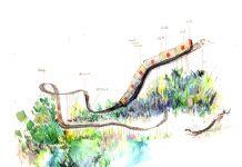 Seit 2006 steigen die Fahrpreise für den ÖPNV stark an. Illustration: Xiyu Tomorrow