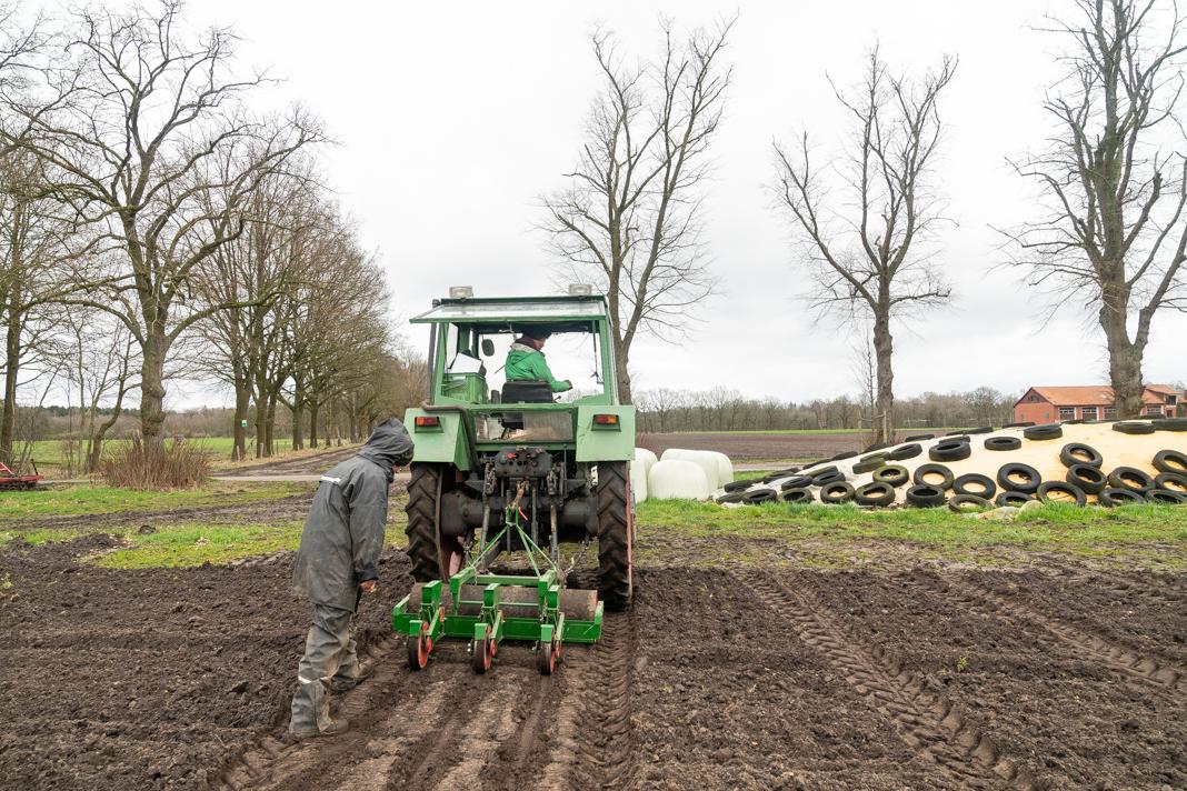 Bianca Rade steuert einen grünen Traktor mit angehängter Sämaschine über den Acker der Solawi Superschmelz. Ihre Kollegin Katharina Kampe folgt der Spur des Traktors und kontrolliert die Funktion der Sämaschine