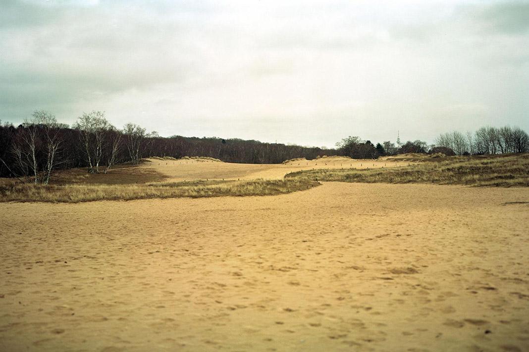 Eine Dünenlandschaft in Hamburg Lohbrügge.