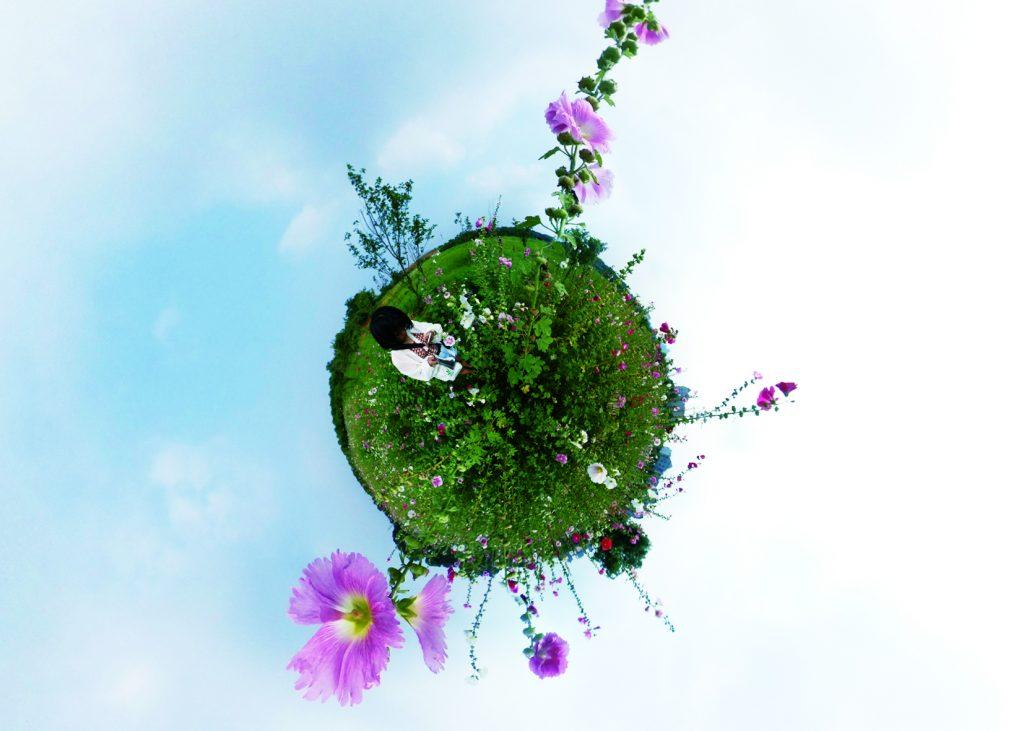 Ein Planet mir Blumen