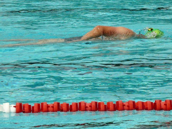 Ein Schwimmer zieht in einem Becken seine Bahnen.
