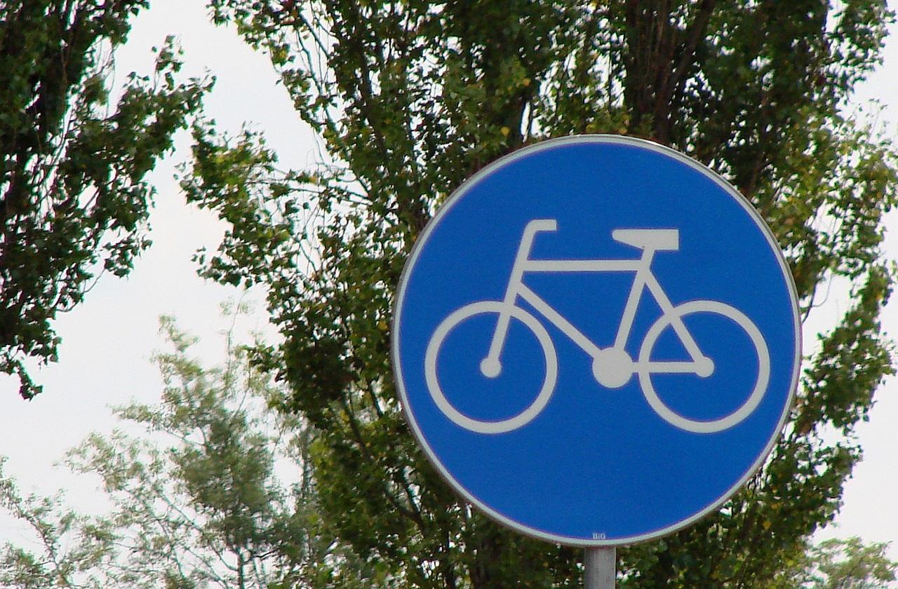 Blaues Schild mit weißem Fahrradsymbol.