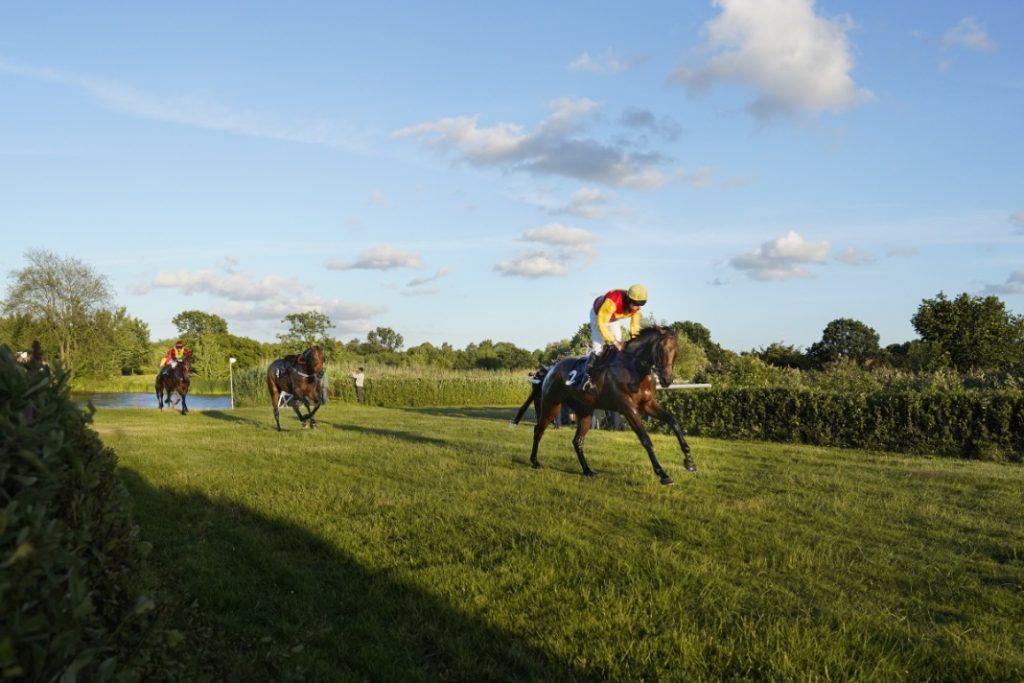 Drei Pferde laufen aus dem kleinen See im Innenraum der Horner Rennbahn, eins von ihnen ist reiterlos