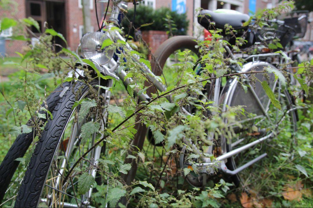 Nebeneinander stehende Fahrräder in einer Stadt