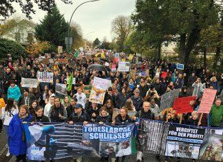 Menschen mit Protestschildern auf einer Demo gegen Tierversuche in Hamburg.
