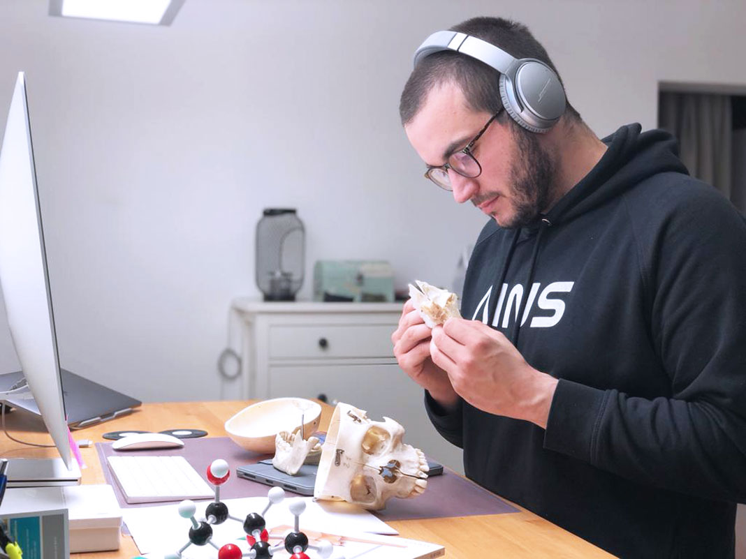 Medizinstudent Timo untersucht einen menschlichen Schädel.