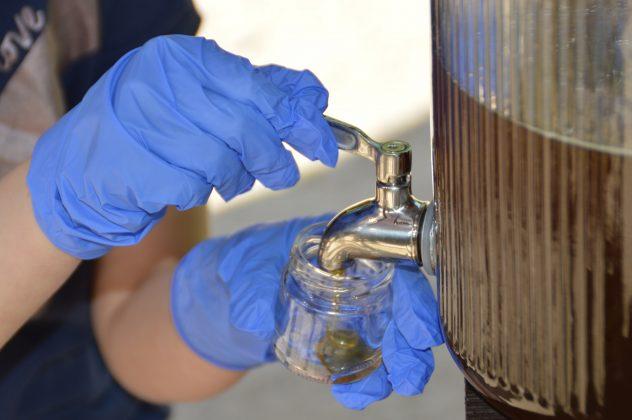 Zwei Hände in Handschuhen halten ein Glas in das Honig gefüllt wird