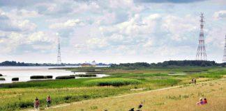 Foto der Natur im Regionalpark_Wedeler