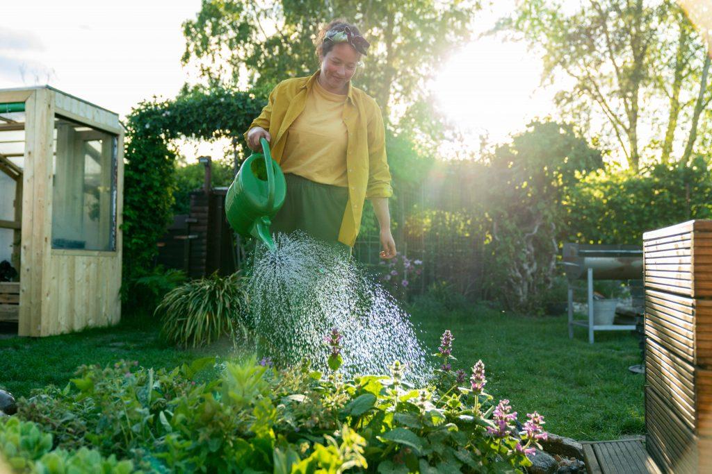 Tuula gieß die Beete im Schrebergarten