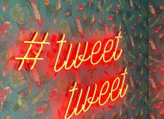 Vogeltapete mit Neonschriftzug
