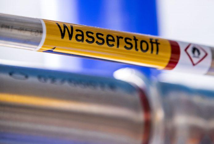 Ein neues Leitungsnetz für Wasserstoff soll bis 2030 den Hamburger Hafen versorgen. Foto: Jens Büttner/dpa
