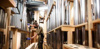 Jede einzelne Pfeife der Orgel wird in der Elbphilharmonie akribisch gereinigt. Foto: dpa/Christian Charisius