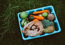 Eine Kiste mit Gemüse: WIe nachhaltig sind Biokisten?