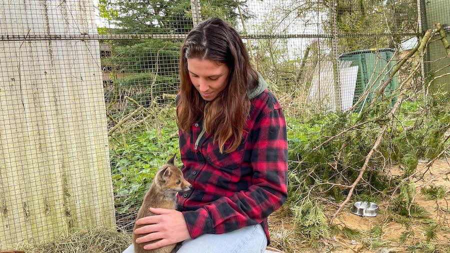 Wildtiere: Annika im Fuchsgehege